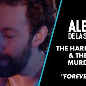 """The Harpoonist & The Axe Murderer – """"Forever Fool"""" (Live) – Album de la Semaine – CANAL+"""