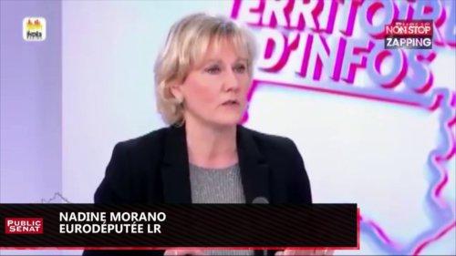 """Zap politique – Nadine Morano sur les migrants : """"La France c'est pire qu'une passoire"""" (vidéo)"""